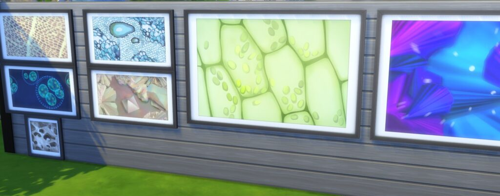 Sims 4 collection tableau microscope
