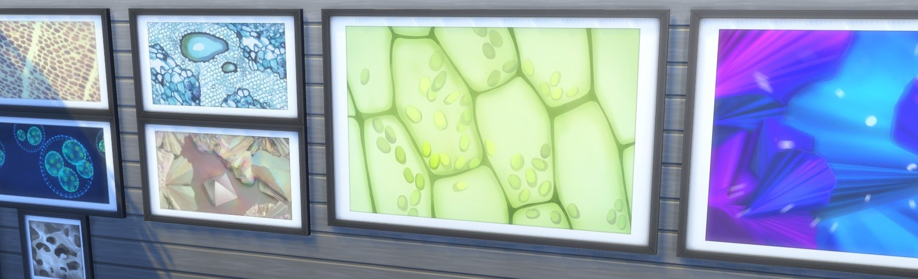 Les Sims 4 - images du microscope