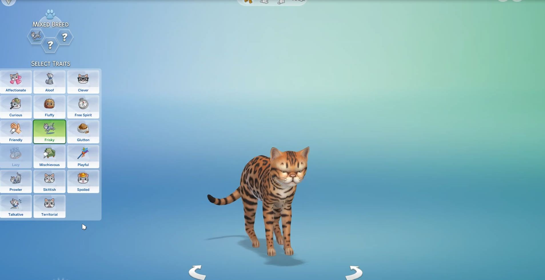 Dogs And Cats Sims
