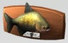 les_sims_4_jungle_poisson_tambaqui